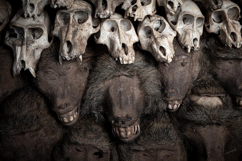 Stacked up baboon heads and skulls.