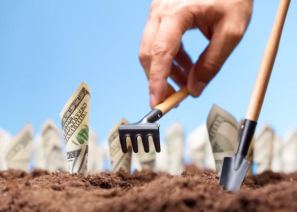 A person holding a miniature garden rake planting hundred dollar bills in the soil.