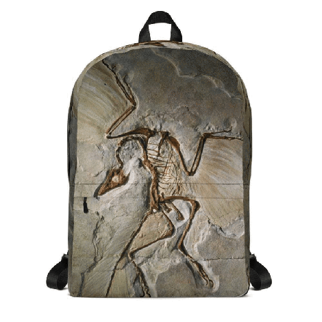 """<p><strong>Svaha</strong></p><p>svahausa.com</p><p><strong>$49.99</strong></p><p><a href=""""https://svahausa.com/collections/bags/products/archaeopteryx-fossil-custom-backpack"""" rel=""""nofollow noopener"""" target=""""_blank"""" data-ylk=""""slk:Shop Now"""" class=""""link rapid-noclick-resp"""">Shop Now</a></p><p>This <strong>medium-sized backpack</strong> is just big enough for him to take along on all his adventures, and it even includes a padded laptop compartment. The archaeopteryx fossil design will make him feel like he's off to Camp Cretaceous. <em>No age recommendation given</em></p>"""