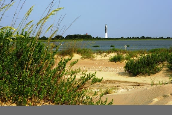 View of south end of Cape Island in Cape Romain National Wildlife Refuge in South Carolina. The remains of the Civil War-era steamer Planter are located within sight of an 1857 lighthouse.