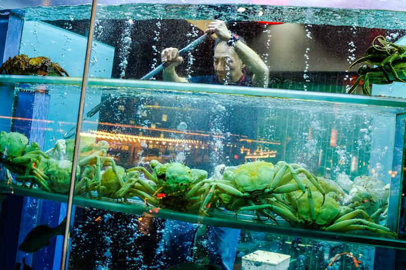 Crabs for sale in a Melbourne restaurant display window.