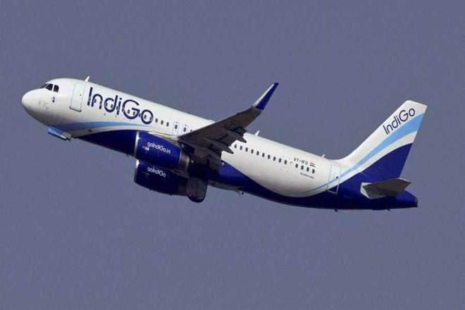 indigo flights from delhi, indigo flights status, indigo flights news, indigo flights schedule, indigo flights fares, indigo flights from delhi to hyderabad