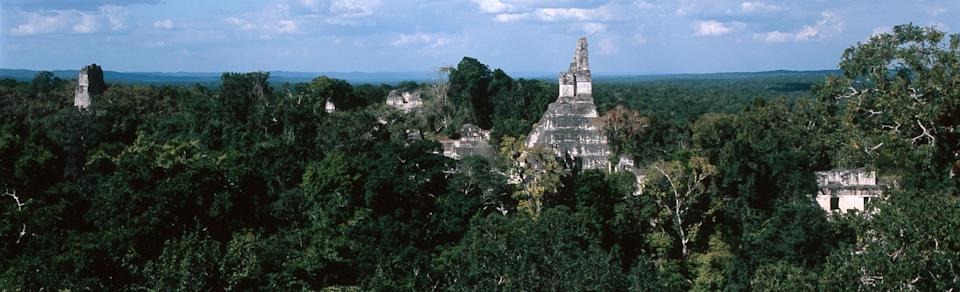 Hidden Ancient Mayan 'Megalopolis' With 60,000 Structures Discovered in Guatemala Using Lasers