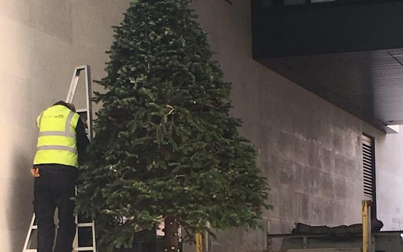 A decked-out tree stood at the door of New Broadcasting House for just one week before it was cut up and carted off
