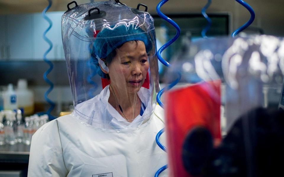 """This file photo taken on February 23, 2017 shows Chinese virologist Shi Zhengli inside the P4 laboratory in Wuhan, capital of China's Hubei province. - The World Health Organization said on May 5, 2020 that Washington had provided no evidence to support """"speculative"""" claims by the US president that the new coronavirus originated in a Chinese lab. The facility is among a handful of labs around the world cleared to handle Class 4 pathogens (P4) - dangerous viruses that pose a high risk of person-to-person transmission. - AFP"""