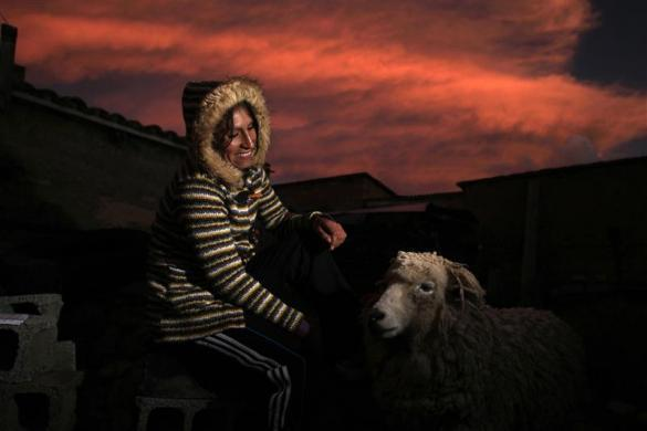 Gladys Tejeda, the first Peruvian athlete who qualified for the 2012 London Olympic Games, poses for a portrait next to a sheep at her home in the Andean province of Junin, May 13, 2012.