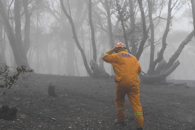 A CFA firefighter is seen in burnout land near Mount Glasgow, Victoria.