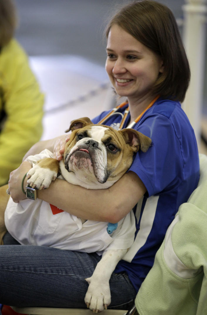 Elizabeth Ahrens, of La Vista, Neb., holds her dog Scruffy during the 33rd annual Drake Relays Beautiful Bulldog Contest Monday, April 23, 2012, in Des Moines, Iowa. The pageant kicks off the Drake Relays festivities at Drake University where a bulldog is the mascot. (AP Photo/Charlie Neibergall)