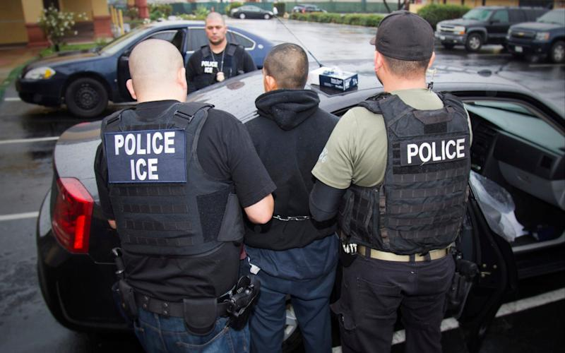 Donald Trump delayed planned raids but vowed deportations if asylum laws were not changed - U.S. Immigration and Customs Enforcement