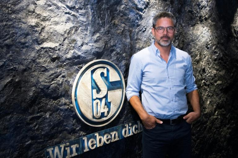 At the coalface: having steered former club Huddersfield to the Premier League, David Wagner has his work cut out turning around the fortunes of his new Bundesliga team Schalke 04