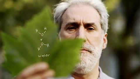 HT artificial Leaf nt 130524 16x9 608 Chemist Hopes Artificial Leaf Can Power Civilization Using Photosynthesis