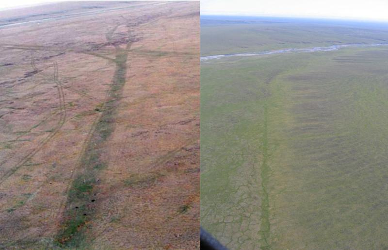 Aerial images of a seismic trail made in the winter of 1985 in the 1002 area of the Arctic National Wildlife Refuge, near Simpson Cove. The image on the left was taken in July 1985. The image on the right was taken in July 2007 — 22 years after the disturbance. (US Fish and Wildlife Service)