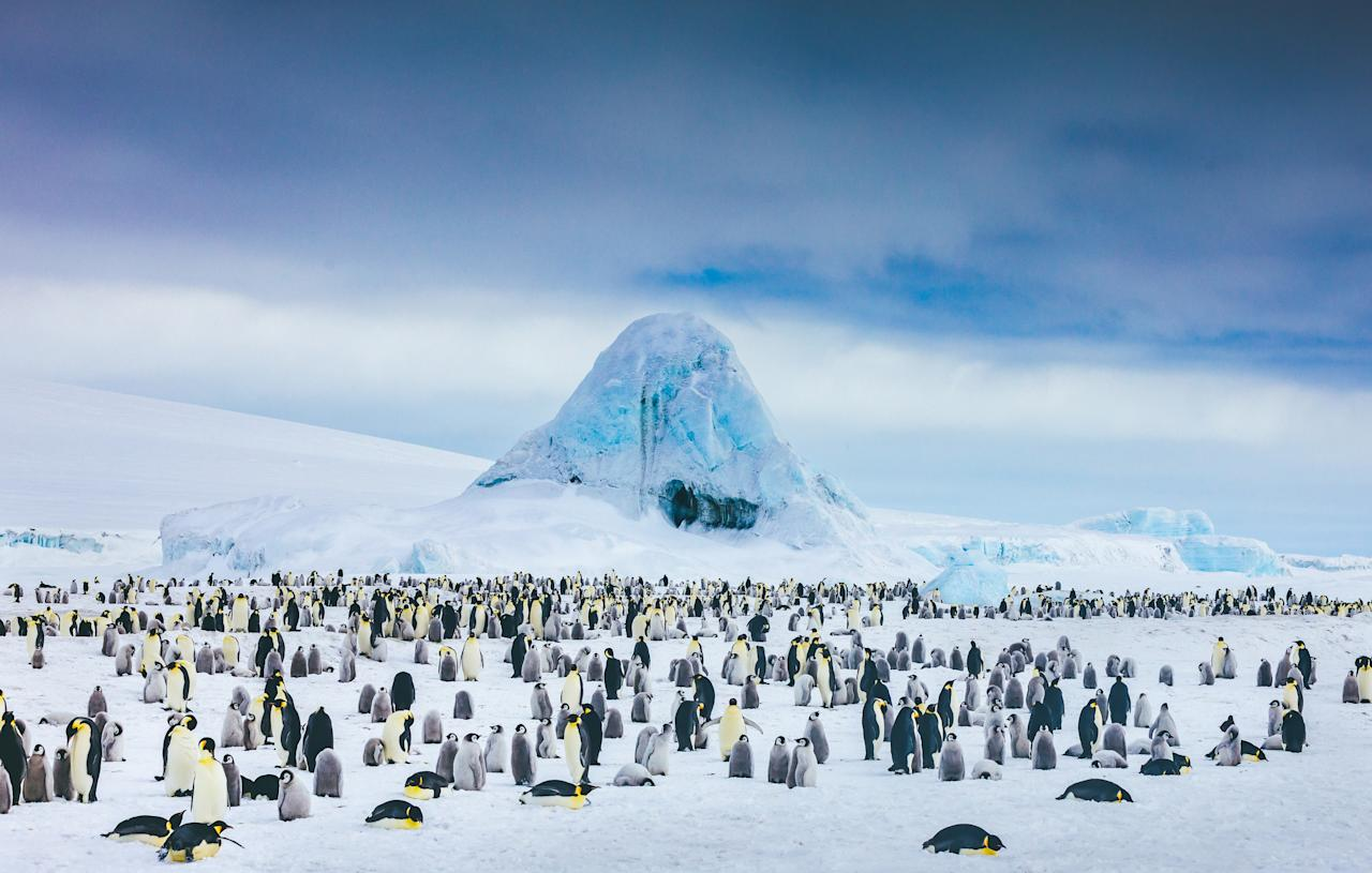 """<p>Topping the bucket list as the final frontier for the world's most avid travelers, <a href=""""https://www.cntraveler.com/story/these-new-expedition-cruises-take-travelers-to-the-worlds-most-remote-corners?mbid=synd_yahoo_rss"""">Antarctica</a> has never been more accessible, as a surge in expedition cruising has chartered new ways south. Only a select few vessels in the world are outfitted with ice-strengthened hulls strong enough to forge through the waters and iceberg-flanked passageways of the sprawling continent. The range in cruises spans small, expedition-focused ships that can accommodate 50-100 passengers to larger, 200-passenger five-star vessels. Voyages originate predominantly from Argentina's <a href=""""https://www.cntraveler.com/destinations/buenosaires?mbid=synd_yahoo_rss"""" target=""""_blank"""">Buenos Aires</a> and Ushuaia before crossing the choppy seas of the Drake Passage, where whales can often be spotted frolicking in a ship's wake. Temperatures on the Antarctic Peninsula (where most cruise ships frequent) are warmest December through February, with averages in the 30s. Nearly 24 hours of daylight makes up for the climate, with endless hours of sightseeing and sporadic excursions from the ship by way of guided Zodiac boats and kayaks.</p> <p>On trend is the new fly-cruise experience, optimizing your time cruising the Antarctic coast by flying over the trying swells of the Drake Passage, normally a two-day trip by sea completed in two hours by plane. Having launched just last month, <a href=""""https://antarctica21.com/ships-aircraft/mv-magellan-explorer/"""">Antarctica21's Magellan Explorer</a> is the region's newest ship purpose-built for the operation of Antarctic fly and cruise expeditions. If you prefer your white ice caps with white glove service, Silversea's newly announced <a href=""""https://www.silversea.com/lp-antarctica-bridge.html"""">Antarctica Bridge</a> will be the first to bring an ultra-luxury touch to the fly-cruise experience. An all-business class p"""