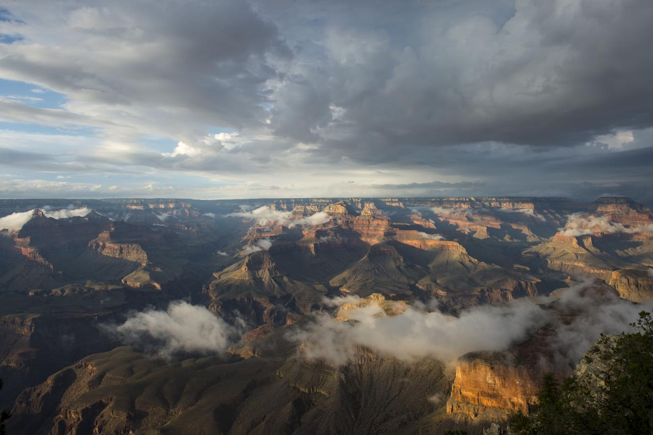 <p>From volcanoes in Hawaii to the Eastern Appalachians, national parks in the United States have some of the most breathtaking views on earth. Let's escape for a moment, and explore some of the most stunning photos captured at the majestic national parks throughout the country.</p>
