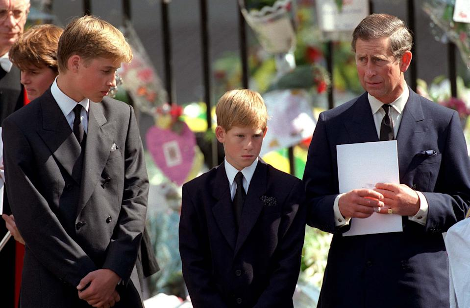 Prince William Charles and Harry