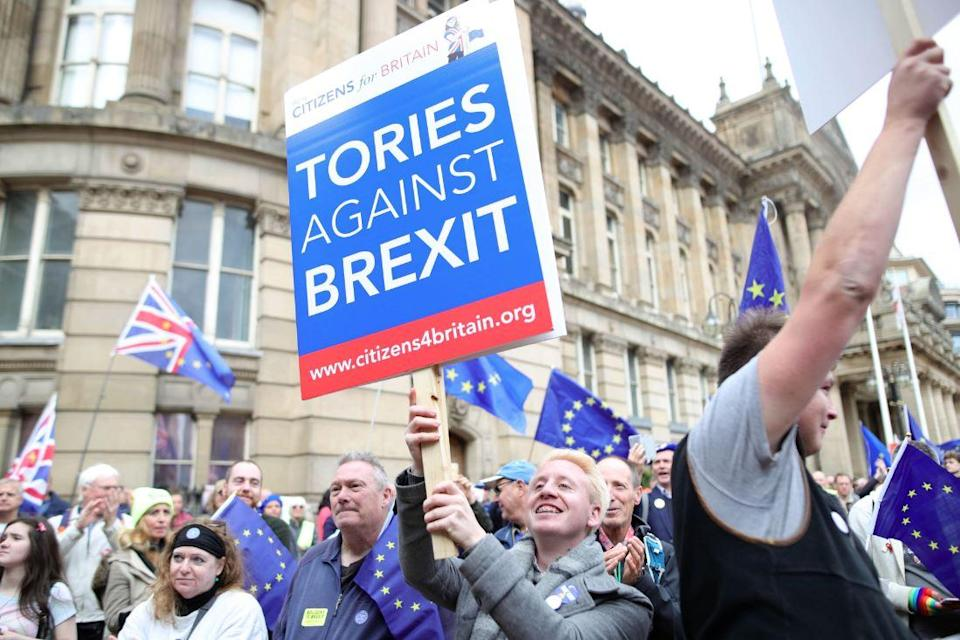 Pro-EU Conservatives march in London last month (PA)