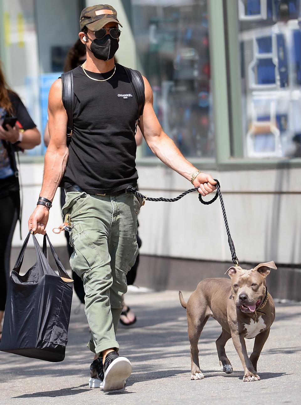 <p>Justin Theroux is spotted walking his dog Kuma in N.Y.C. on July 28.</p>