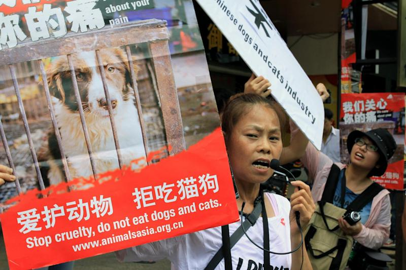 Animal rights activists protest against eating dog meat (AFP/Getty Images)