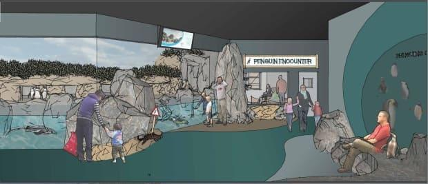A rendering of a proposed penguin exhibit at the Magnetic Hill Zoo in Moncton. The exhibit would be part of the first phase of the proposed three-phase expansion of the zoo. (City of Moncton/Submitted - image credit)