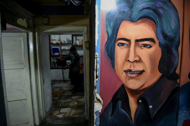 "Sporting a black quiff and sideburns, Ahmad Zahir sang of love and heartbreak in liberal 1970s Kabul -- a city now plagued by war and suffering, but where the popularity of Afghanistan's ""Elvis"" remains undimmed 40 years after his death"