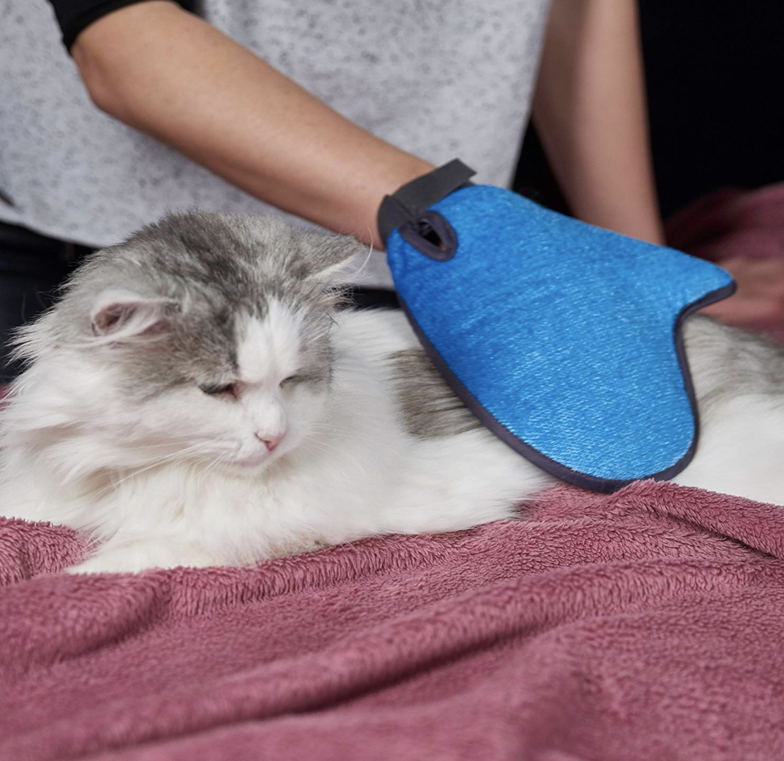 2-in-1 pet glove for grooming and pet hair removal from furniture