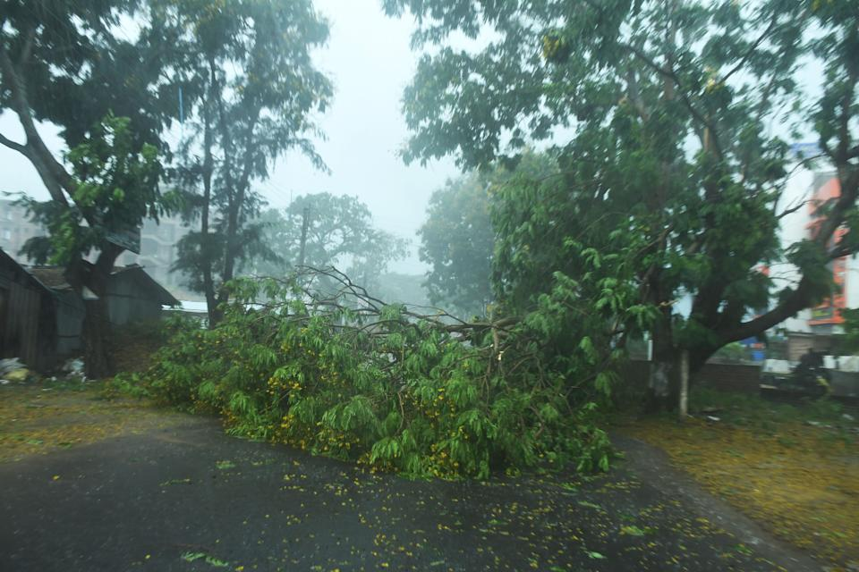 Fallen tree branches are seen along a road ahead of the expected landfall of cyclone Amphan in Digha, West Bengal, on May 20, 2020. (Photo by DIBYANGSHU SARKAR/AFP via Getty Images)
