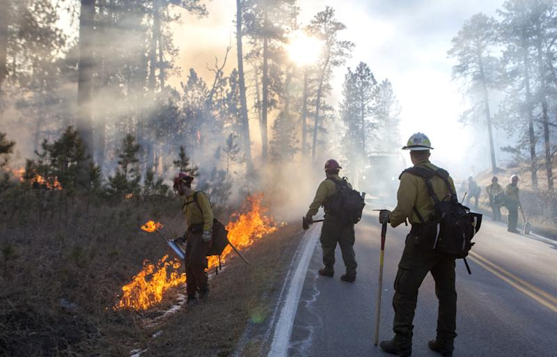 Firefighters use back burning to control the spread of a fire in Custer State Park in South Dakota on Tuesday, Dec. 12, 2017. High wind gusts are making it more difficult for firefighters to battle the blaze at the park in the Black Hills of South Dakota. (Hannah Hunsinger /Rapid City Journal via AP)