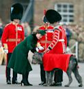 <p>The Duchess of Cambridge presents a sprig of shamrock to an Irish Wolfhound named Domhnall, the mascot of the Irish Guards, during the annual Irish Guards St. Patrick's Day Parade in Hounslow, England. Kate wore a festive green coat by Catherine Walker for the occasion. </p>