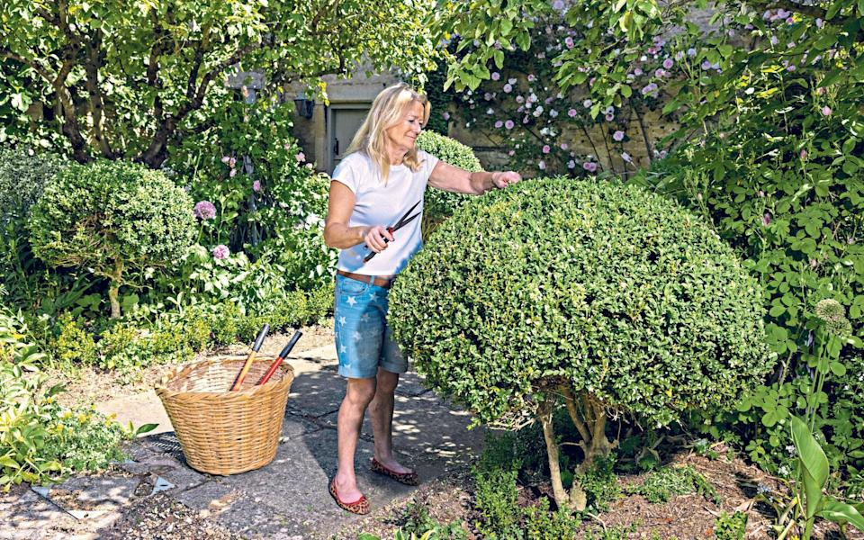 """""""So satisfying when you give old friends a successful makeover"""": garden writer Bunny Guinness using a lawn edger - Heathcliff O'Malley"""