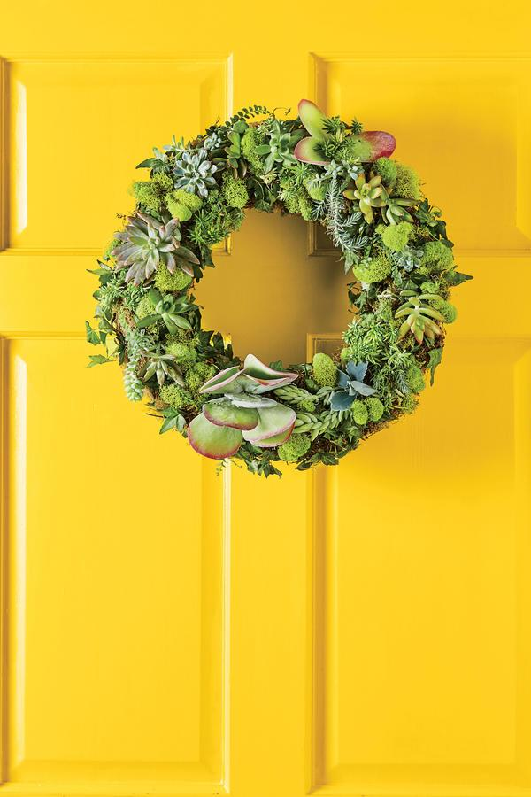 """<p>Start with a living wreath form (a wire form lined with live damp moss and filled with potting soil). Then, insert <a rel=""""nofollow"""" href=""""http://www.southernliving.com/garden/succulents/how-to-propagate-succulents-video"""">clippings of succulents</a>, ivy, and ferns, using U-shaped florist pins to secure everything in place.</p>"""