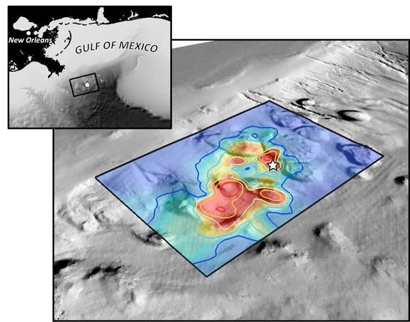 Scientists tracked some of the hydrocarbons from the Deepwater Horizon spill to the bottom of the Gulf, shown here overlaid on seafloor bathymetry.
