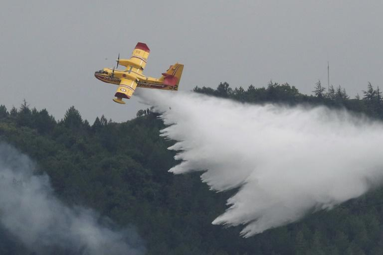 Five water bombers backed up around 500 firefighters on the ground. No homes were lost and no injuries were reported (AFP Photo/RAYMOND ROIG)