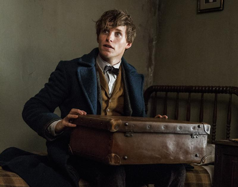 Eddie Redmayne as Newt Scamander in 'Fantastic Beasts and Where to Find Them.' (Credit: Warner Bros.)