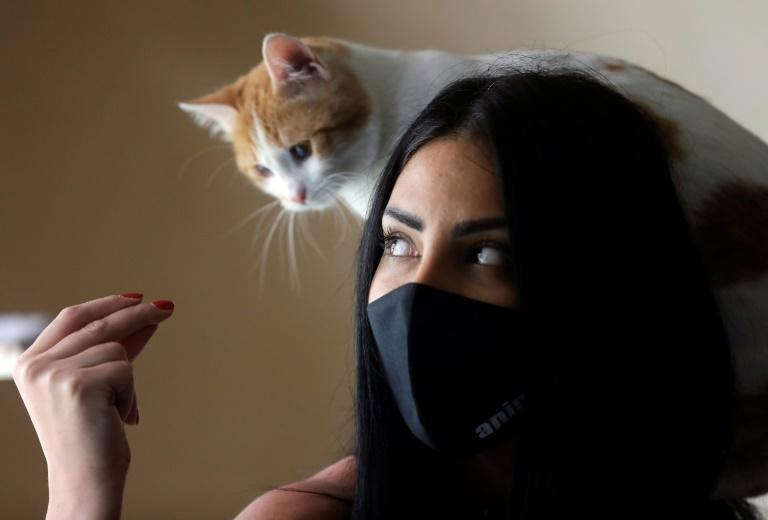 The price of imported pet food, meat and veterinary care has soared in Lebanon