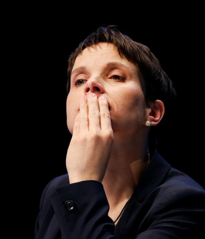 """Frauke Petry wants the party to adopt a policy of """"realpolitik"""" to get into power"""