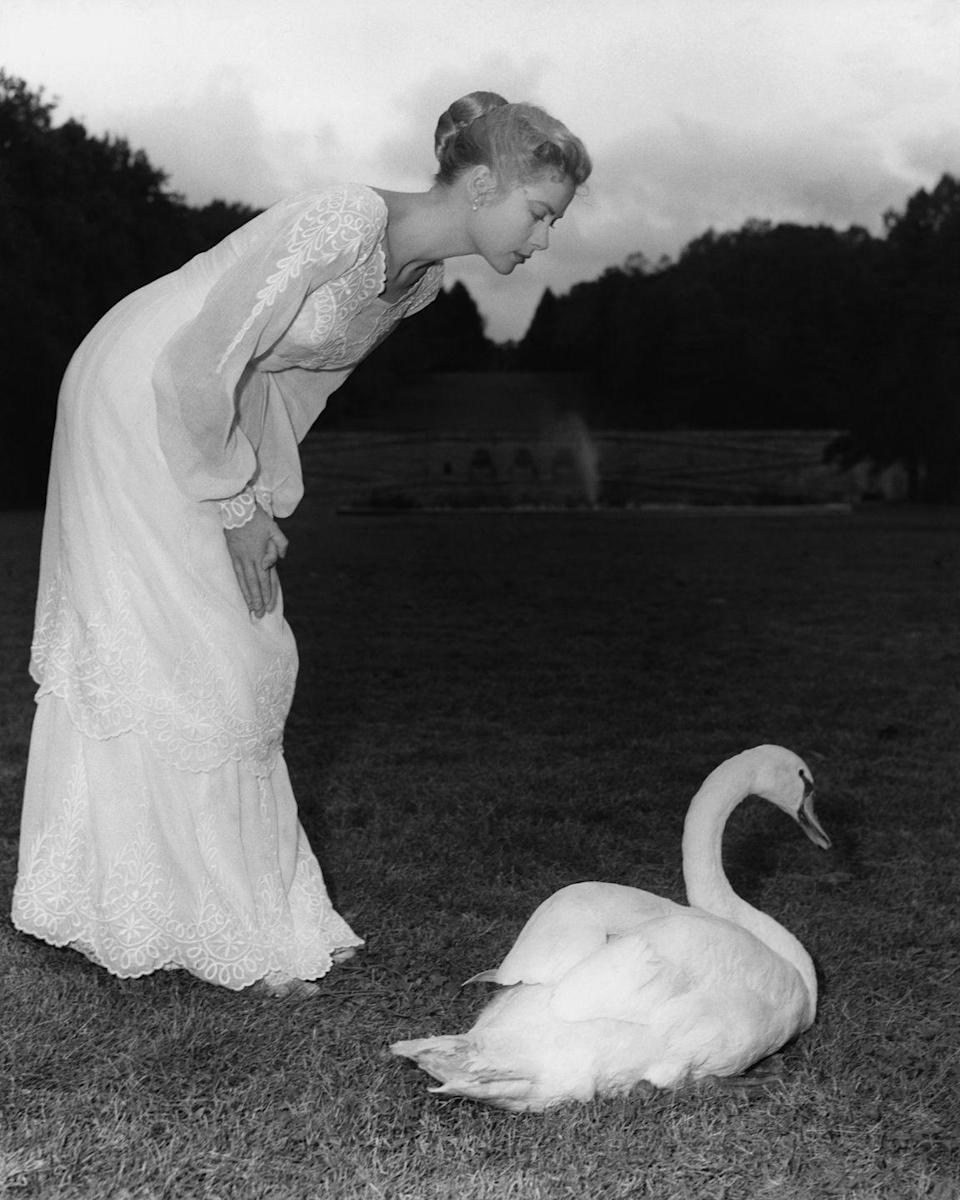 <p>Kelly poses with a swan in a promotional photo for her 1956 film, <em>The Swan</em>. The actress, dressed in a white muslin dress, mimics the movement of the animal for the shot. </p>