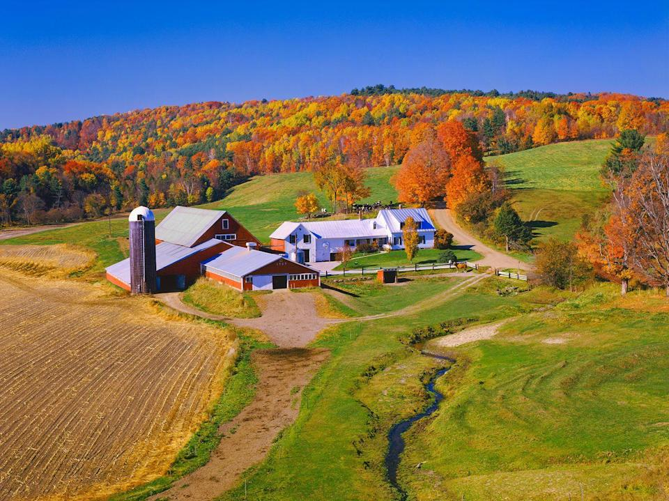 """<p>The crops may already be harvested, but there's still plenty to behold on this <a href=""""https://www.countryliving.com/life/travel/g1594/stowe-vermont-vacation-ideas/"""" rel=""""nofollow noopener"""" target=""""_blank"""" data-ylk=""""slk:Vermont"""" class=""""link rapid-noclick-resp"""">Vermont</a> farm.</p>"""