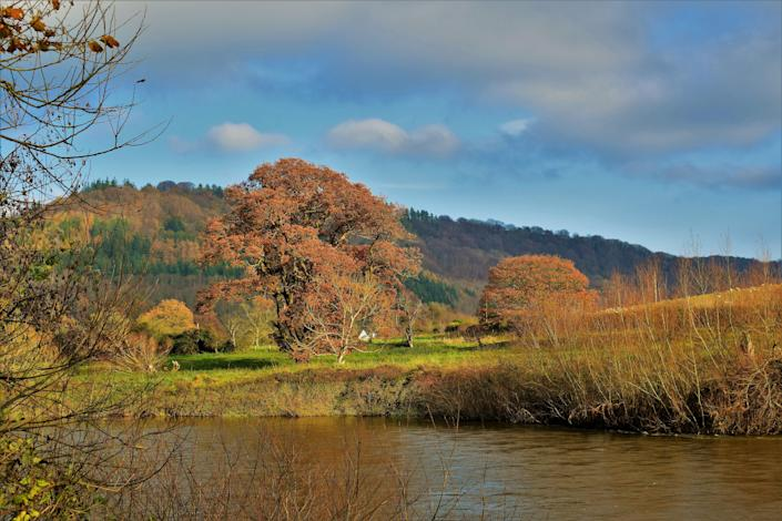 The River Wye, which forms part of the border between England and Wales
