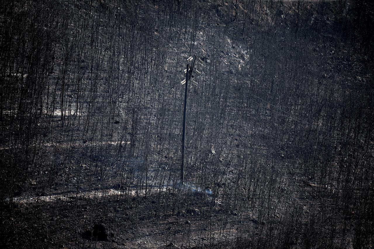 <p>An electricity pole stands among burnt trees following a wildfire in Neos Voutzas, near Athens, Greece, July 25, 2018. (Photo: Alkis Konstantinidis/Reuters) </p>