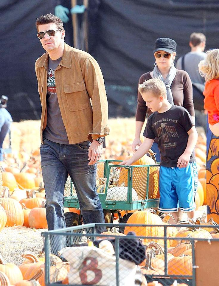 "Last week it was rumored that David Boreanaz had swine flu, but Saturday he was out grabbing gourds with wife Jaime and son Jayden. <a href=""http://www.pacificcoastnews.com/"" target=""new"">PacificCoastNews.com</a> - October 10, 2009"