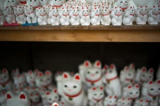Around 10,000 figurines of white cats seated with one paw raised are stacked and strewn around the temple, providing tempting fodder for social media mavens from Japan and abroad