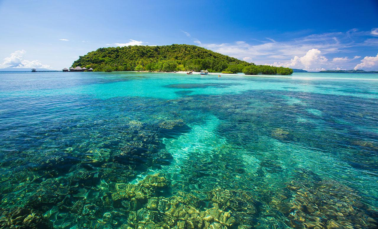 """<h2>Sumatra and Borneo</h2>                                                                                                                                                                 <p><p>Sumatra is an island in Western Indonesia, the sixth largest in the world. Nearby Borneo is the third largest. While these breathtaking islands are not themselves threatened, they've lost 50% of their rain forest (due largely to the palm oil boom) and are thus home to a number of endangered species including the Sumatran tiger, Sumatran orangutan, pygmy elephant, Sumatran rhino and more. <a rel=""""nofollow"""" href=""""https://www.theguardian.com/world/2013/may/26/sumatra-borneo-deforestation-tigers-palm-oil"""">Official figures show</a>70% of what remains of Indonesia's rain forests will be converted to palm or acacia plantations in coming years, with total destruction possible within two decades. For the myriad species who call these two islands home, this most certainly spells extinction. You can help by avoiding products containing palm oil whenever possible—<a rel=""""nofollow"""" href=""""http://www.saynotopalmoil.com/What_can_i_do.php"""">here</a> is a helpful resource for doing so.</p>                                                                                                                                                                   <h4>Getty Images</h4>"""