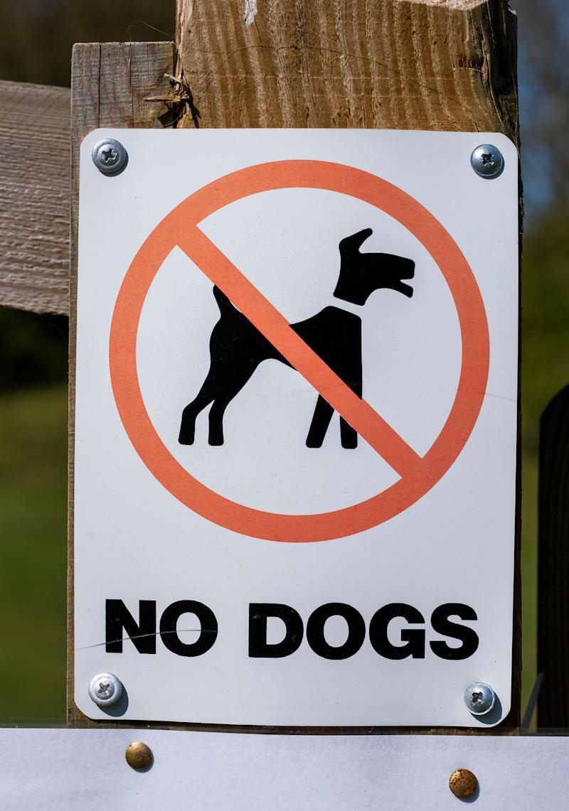 """Photo shows a """"no dogs"""" sign."""