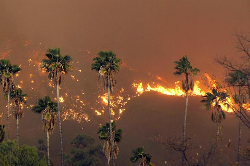 A wildfire burns in the hills just north of the San Gabriel Valley community of Glendora, Calif. on Thursday, Jan 16, 2014. Southern California authorities have ordered the evacuation of homes at the edge of a fast-moving wildfire burning in the dangerously dry foothills of the San Gabriel Mountains. (AP Photo/Nick Ut)