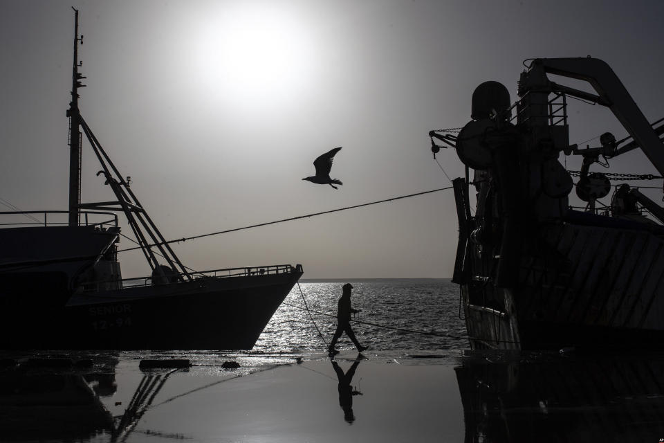 A seagull flies while a worker walks past a fishing vessel docked in the main port in Dakhla city, Western Sahara, Monday, Dec. 21, 2020. U.S. plans to open a consulate in Western Sahara mark a turning point for the disputed and closely policed territory. U.S. recognition of Morocco's authority over the land frustrates indigenous Sahrawis seeking independence. But others see the future U.S. consulate as a major boost for Western Sahara cities like Dakhla. (AP Photo/Mosa'ab Elshamy)