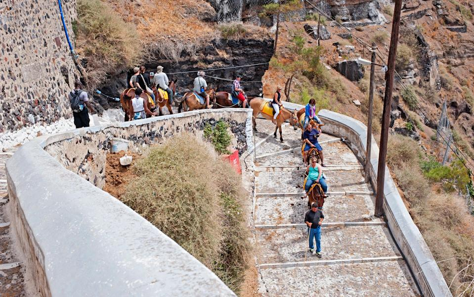 Donkeys have to cope with the steep path up to Fira - majaiva