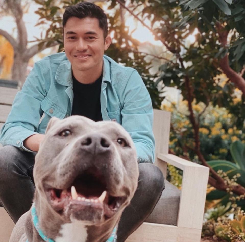 henry golding and pit bull mix dog