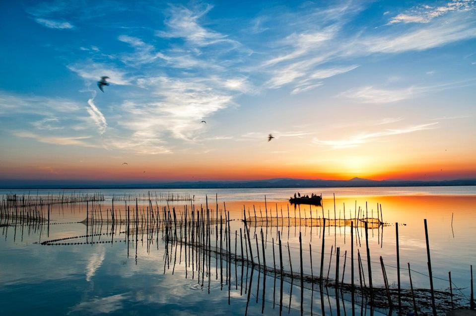 Albufera is one of the most important wetland areas in SpainGetty/iStock