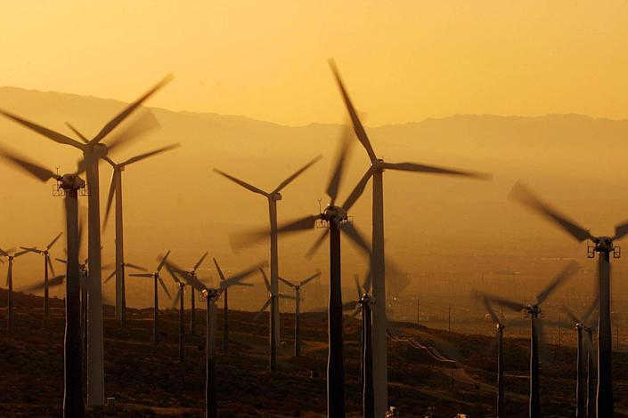 <p>Ex-president Donald Trump issued a statement on Tuesday warning against windmills that 'kill birds, affect the sea, ruin the landscape, and create disasters for navigation'</p> (LEE CELANO/AFP via Getty Images)