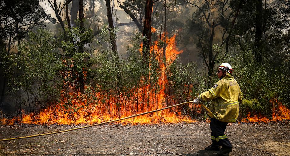 The fire service was conducting a routine hazard reduction when it encountered the alarming sight. Source: Getty Images
